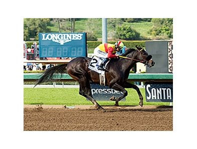 Danzing Candy zips to the win in the San Felipe Stakes.