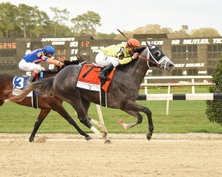 Twin Creeks Racing Stables' Destin delivered a second straight stakes win at Tampa Bay Downs, this time setting a track record in landing the track's top classic prep race: the $350,000 Lambholm South Tampa Bay Derby Stakes (gr. II).