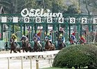 TOBA Owners Concierge at Oaklawn for Arkansas Derby