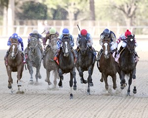 Upstart overpowers the rest of the field in the Razorback Handicap (gr. III) at Oaklawn Park.