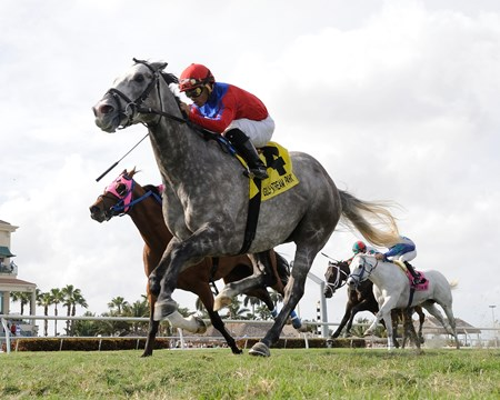 Power Alert overpowers the rest of the field in the Silks Run Stakes at Gulfstream Park.