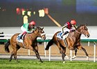 Real Steel Takes Dubai Turf for Japan