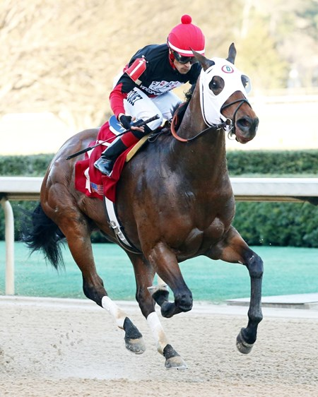Subtle Indian sizzles in the Hot Springs Stakes at Oaklawn Park in Hot Springs, Arkansas.