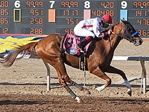 City Zip colt Collected is too strong in the Sunland Park Festival of Racing