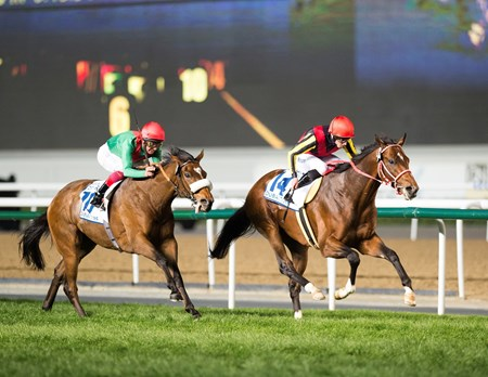 Real Steel made it two wins for Japan on the Dubai World Cup card when he ran down Very Special in the stretch and held off Euro Charline in the $6 million Dubai Turf Sponsored by DP World (UAE-I) at Meydan Racecourse.