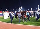 Dubai World Cup: California Chrome After the Race