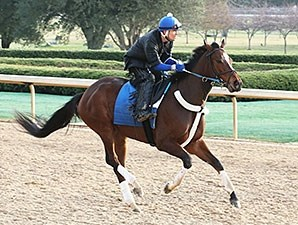 Untapable works at Oaklawn Park March 6.