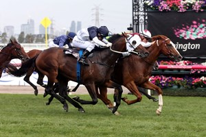 Palentino battles down the stretch to win the Australian Guineas at Flemington Racecourse in Australia.
