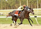Outwork, inside bay, finished second to stablemate Destin in the Tampa Bay Derby.