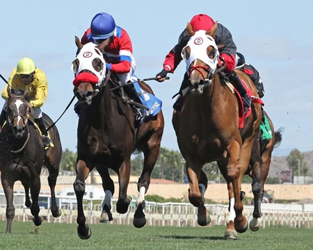 Malibu Kash beats Hymn's Girl and Joan of Arch in the Scottsdale Handicap at Turf Paradise.