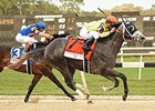 Destin wins Tampa Bay Derby