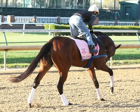 Terra Promessa - Morning Gallop - Churchill Downs 04-16-16