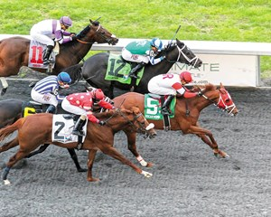 Oscar Nominated isn't nominated to the Triple Crown, but he's headed to the Kentucky Derby Presented by Yum! Brands (gr. I) after his upset win in the $500,000 Horseshoe Cincinnati Casino Spiral Stakes (gr. III) at Turfway Park.
