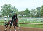 Nyquist trains April 26 at Keeneland