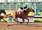 Los Alamitos Meet Set to Kick Off July 6