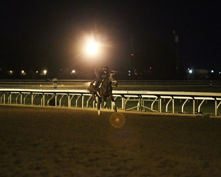 Rachel's Valentina morning training at Keeneland April 20, 2016.