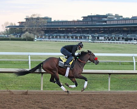 Nyquist - Morning Workout - KEE - 041516 Trainer: Doug F. O'Neill Owner: Reddam Racing LLC Breeder: Summerhill Farm