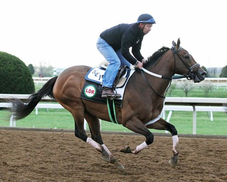 Jewel of a Cat trains at Keeneland April 14, 2016.