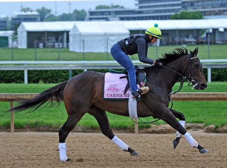 Carina Mia Saturday morning, April 30 at Churchill Downs.