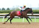 Ward to Work Lady Aurelia at Keeneland