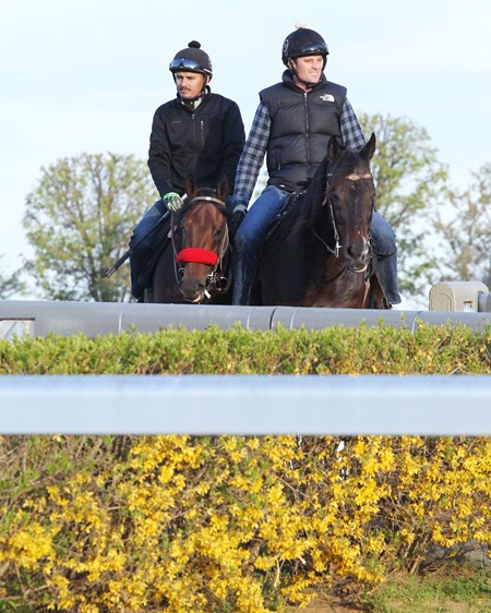 Nyquist - Morning Training - KEE - 041416