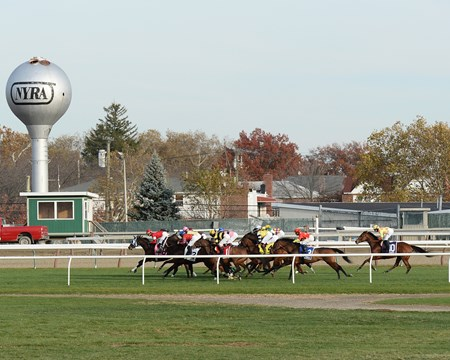 With the benefit of a perfect ground-saving trip under John Velazquez, Aigue Marine rallied up the rail to catch favored Danza Cavallo in the $200,000 Long Island Handicap (gr. IIIT) on yielding turf Nov. 8, 2014 at Aqueduct Racetrack.. Photo by: Joe Labozzetta/NYRA