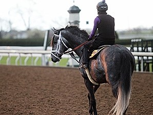 Mylute - Keeneland, April 7, 2016