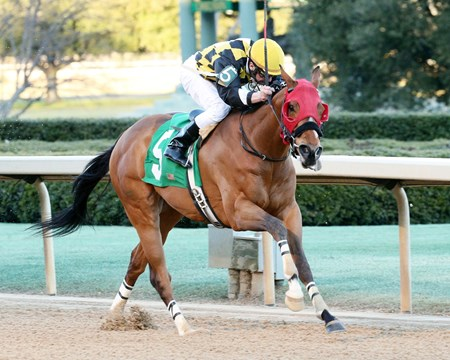 IVAN FALLUNOVALOT