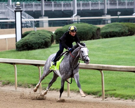 Cherry Wine worked five furlongs in 1:00.60 at Churchill Downs on April 30, 2016.