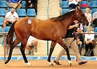 Three-Day Inglis Easter Sale Concludes