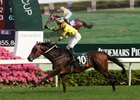 Werther Named Hong Kong's Horse of the Year