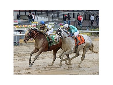 "Salutos Amigos comes running on the outside to catch Calculator in the Carter.<br><a target=""blank"" href=""http://photos.bloodhorse.com/AtTheRaces-1/At-the-Races-2016/i-XdzgMWc"">Order This Photo</a>"