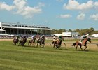 Racing at Tampa Bay Downs