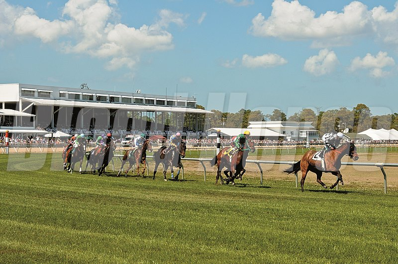 Tampa Bay Downs; Scene; Scenic; First Turn; Grandstand