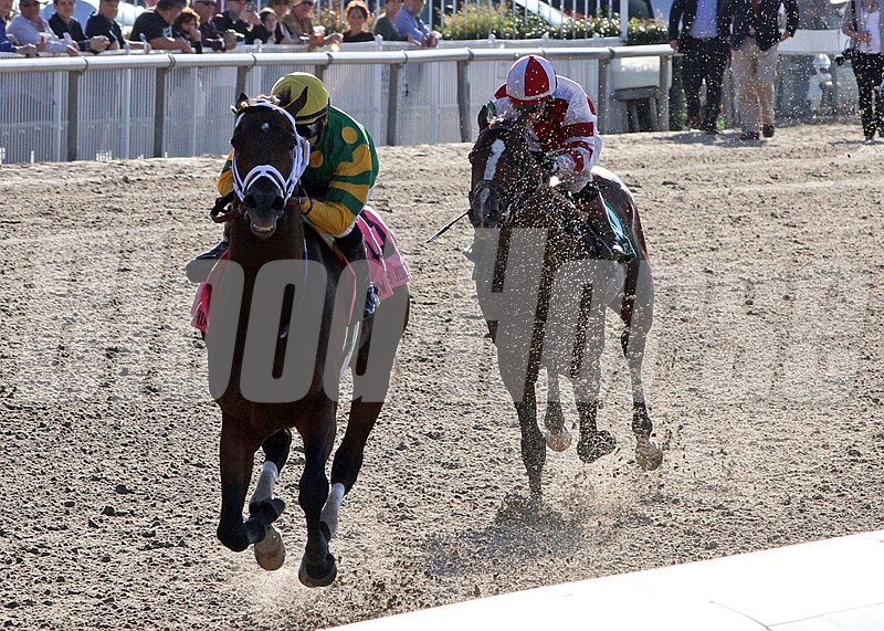 3/29/2014  -  Palace Malice ridden by Mike Smith pulls away from Normandy Invasion in deep stretch to capture the 90th running of the Grade II New Orleans Handicap at Fair Grounds.