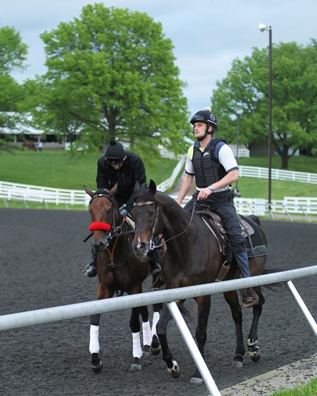 Nyquist trains at Keeneland April 27, 2016