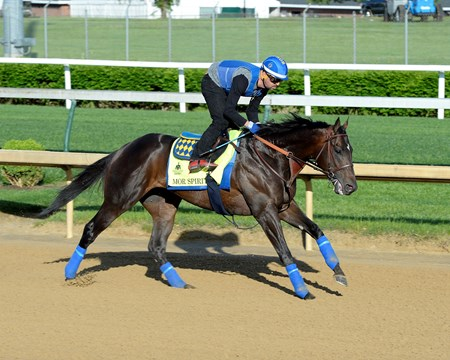 Mor Spirit on track at Churchill Downs in Louisille, Ky., on April 29, 2016.