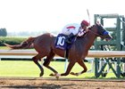 In Lexington Stakes, Collected Cashes In