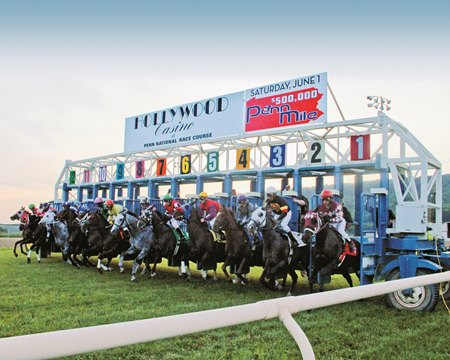 Horses leave the starting gate at Penn National Race Course