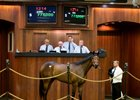 Hip 1214, a Quality Road-Over Andover filly topped the April 22 session at $775,000.