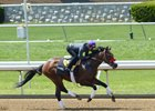 Nyquist works out at Keeneland with Mario Gutierrez aboard