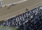Last year's Wood Memorial crowd at Aqueduct Racetrack