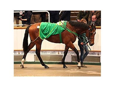 Lot 47, a son of Invincible Spirit, brought 360,000gns (US$539,670).