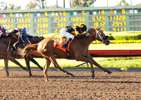 Seltzer Thoroughbreds' Finest City and jockey Kent Desormeaux, right, outleg Lost Bus (Fernando Perez), left, and Fantastic Style (Rafael Bejarano), inside, to win the Grade II, $200,000 Great Lady M Stakes, Saturday, April 23, 2016 at Los Alamitos Race Course, Cypress CA.