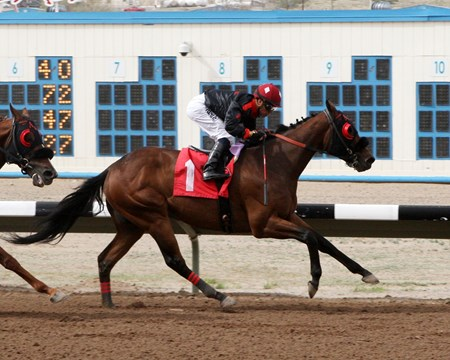 Redneck Humor laughs his way to the finish of the Inaugural Handicap at SunRay Park.
