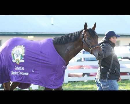 Reddam Racing LLC's Nyquist takes a bath at Keeneland April 13.