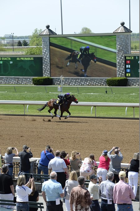 Nyquist works at Keeneland on April 29, 2016
