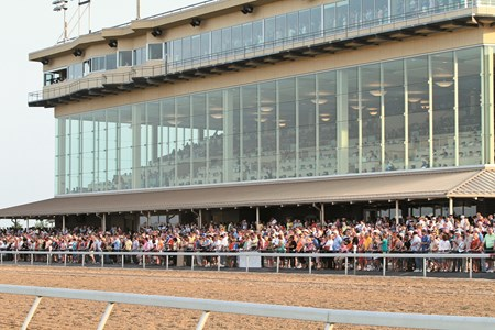 The crowd watches the inaugural running of the Penn Mile at Penn National on June 1, 2013.