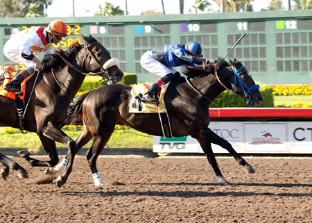 Boozer leaves the rest of the field hungover in the $100,000 Bertrando Stakes at Los Alamitos.