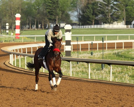 Nyquist trains at Keeneland April 20, 2016.